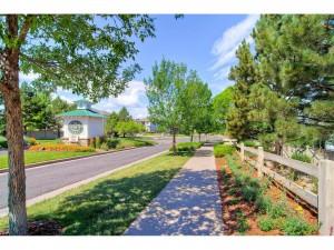 Brandbury Ranch Parker Homes For Sale