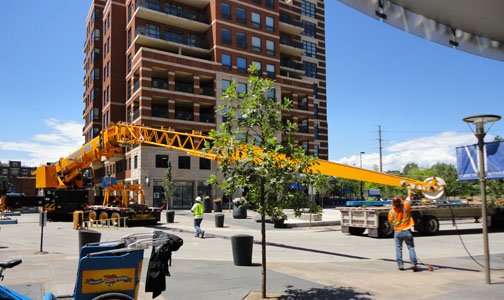 Crane in the plaza Crane on the Plaza