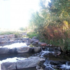 Goldsmith Gulch in the Bible Park Denver Neighborhood