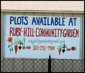 Ruby Hill Neighborhood: Ruby Hill Community Garden