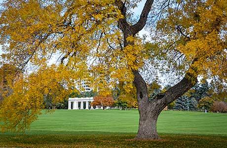 Explore Congress and Cheesman Park