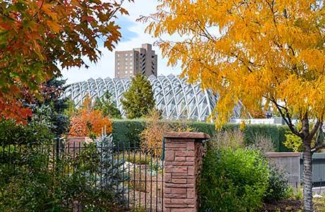 Explore the Congress Park Neighborhood and Cheesman Park Neighborhood