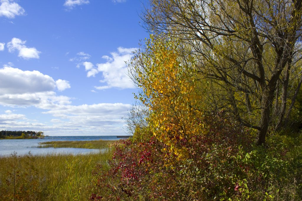 Cherry creek state park in the fall