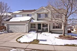 Large Family Home in Highlands Ranch