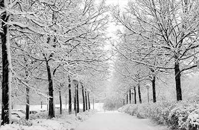 2013-blog-winterizing