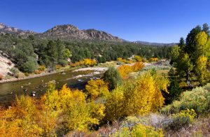 Mountain Homes for sale in Conifer Colorado