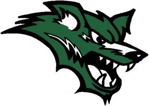 colorwolflogo 300x214 Conifer Colorado Area Schools