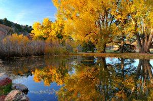 Lakewood Colorado Neighborhoods
