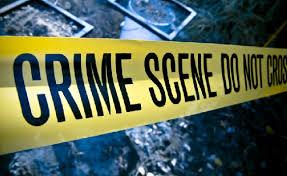Platt Park Crime Report