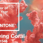 The 2019 Color of the Year Is…