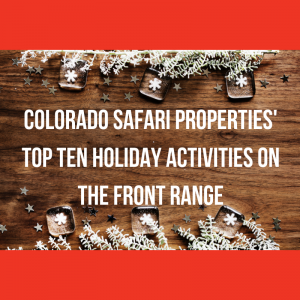 Top Ten Denver Area Holiday Activities