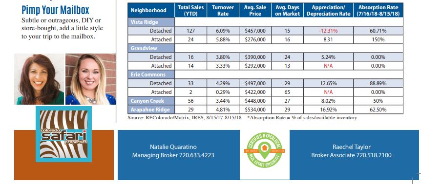 Picture of the table from the Erie Report containing statistics for 5 neighborhoods in Erie.