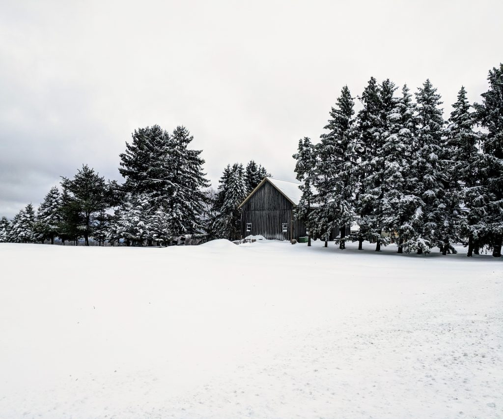 Photo of wooden cabin in a snowy landscape with trees - Getting ready for winter post