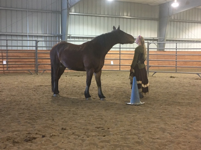 Picture of Valiente giving Sarah a kiss during the training session in the new environment of the indoor arena