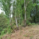 FEATURED LISTINGS- LOTS AND LAND