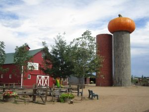 Harvest Fun – Fall Farm Activities in Colorado