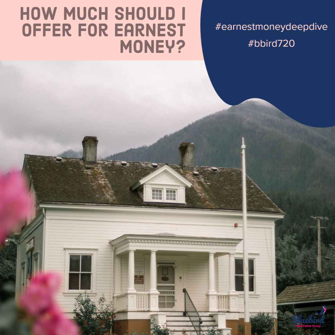 How much should I offer for earnest money?