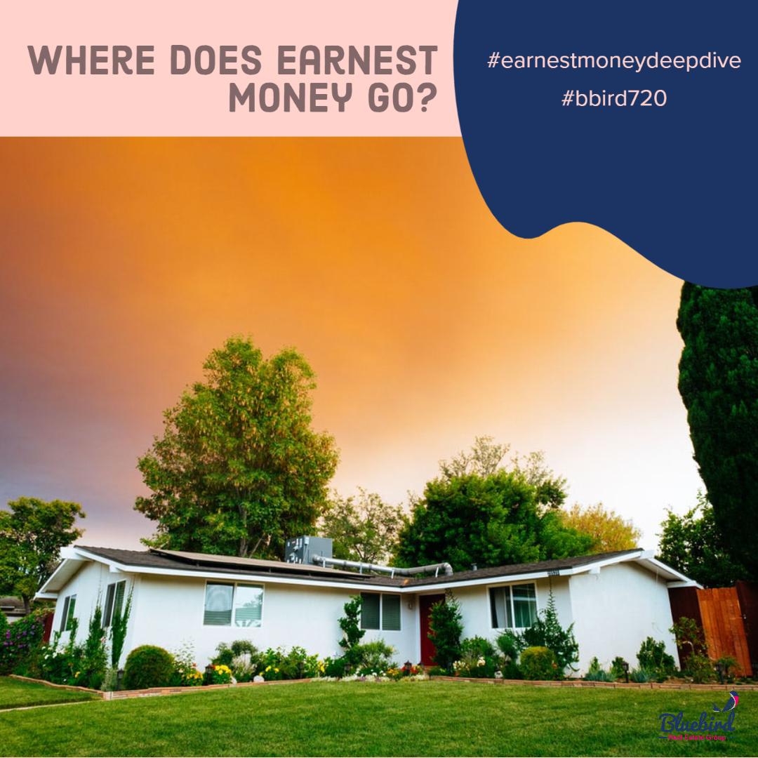Where does earnest money go?