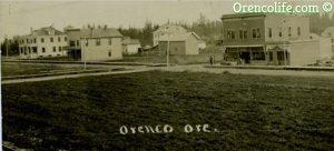 Big Pic1 300x136 Old Orenco Oregon Homes For Sale