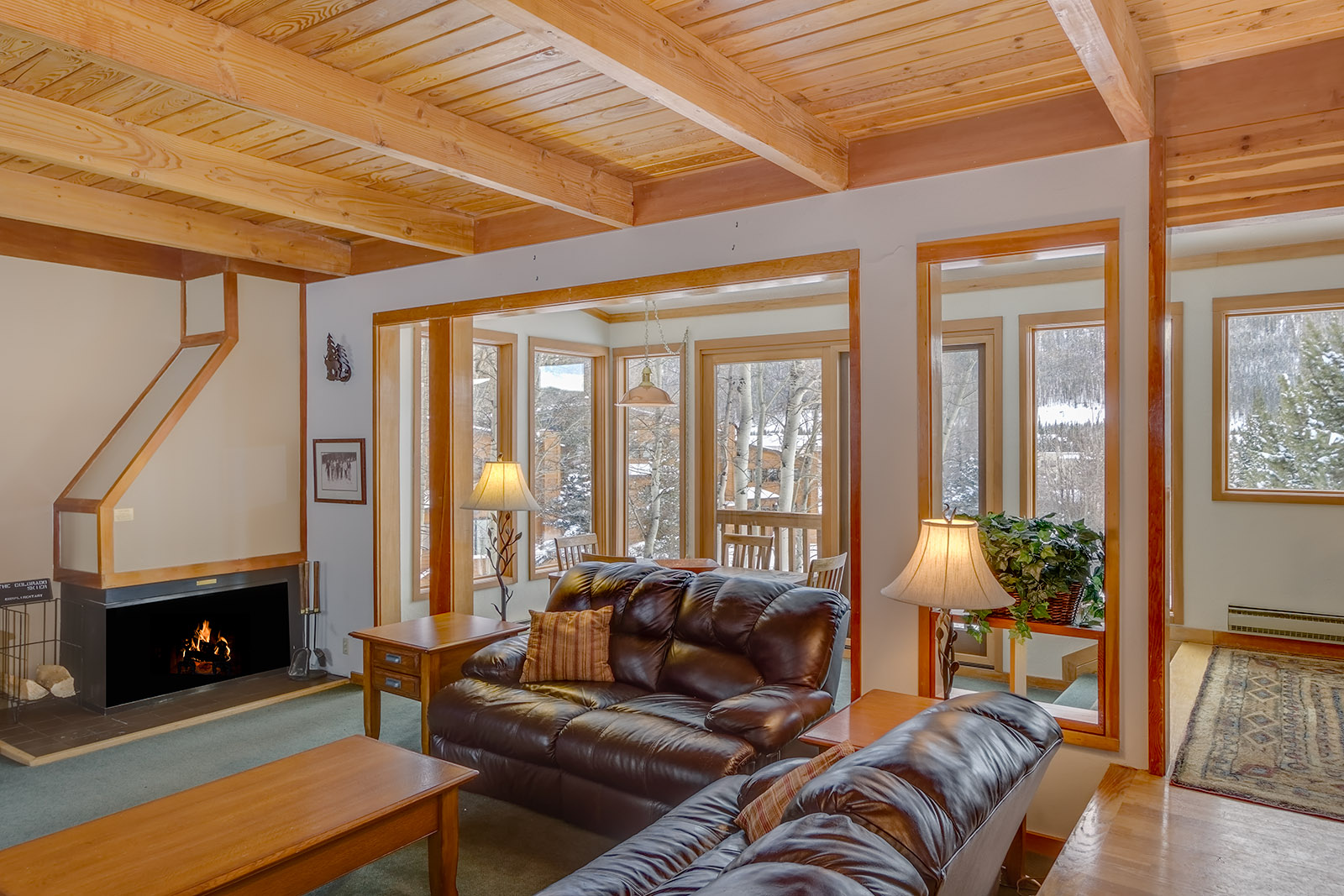 LivingRoomView1Web1 Tennis Townhomes for sale