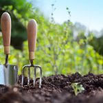 Learn About Spring Gardening