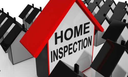 What Home Inspectors See that You Can't