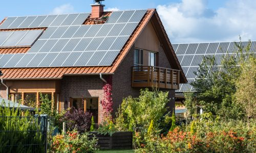 eco-friendly home ideas solar panels plant life