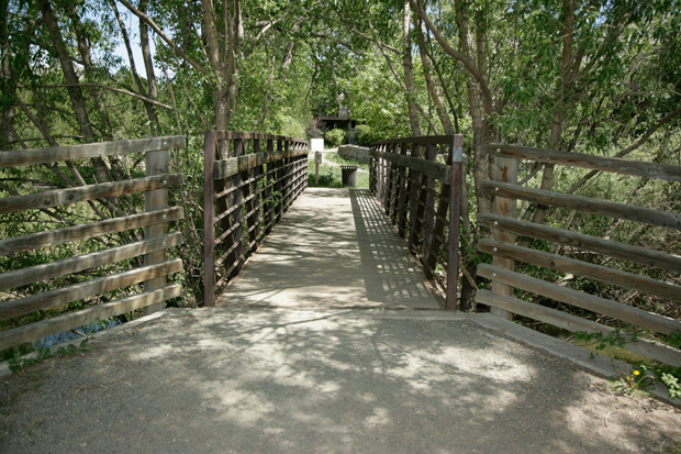Pedestrian Bridge in The Preserve