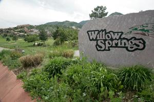 Willow Springs Real Estate