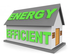 Does the Real Estate Market Truly Value Energy Efficient Homes?