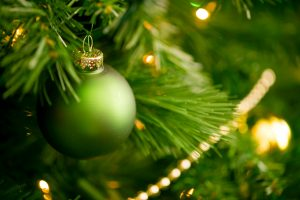 choosing christmas trees