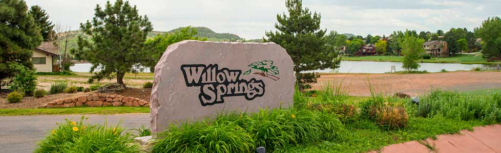 rockwithlake5 Selling Your Willow Springs Home