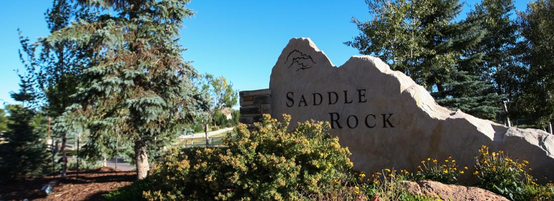 Homes For Sale Saddle Rock Aurora CO