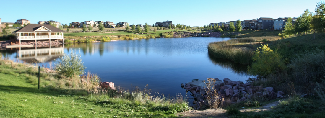 Homes For Sale in Southshore - Aurora CO