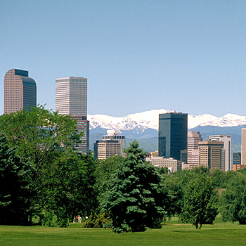 homepage box 16 Your Denver Real Estate Specialist